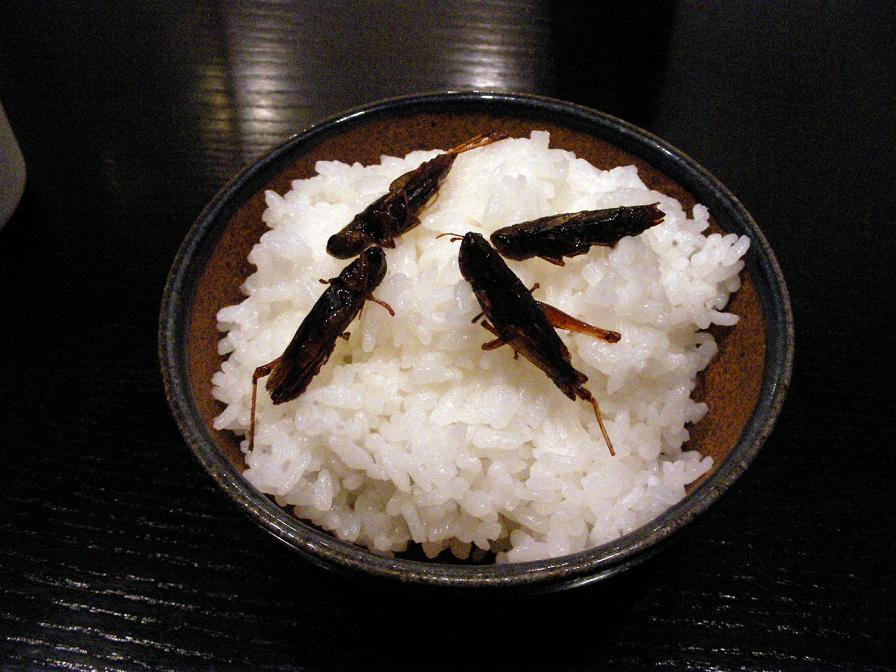 inago_tukudani.jpg